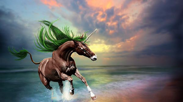 young-horse-1366x768-wallpaper-12849